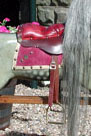 Traditional Wooden Rocking Horse restored antique FH Ayres from The Ringinglow Rocking Horse Company